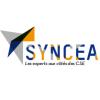 6 Syncea