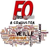 Veille juridique a consulter logo 1